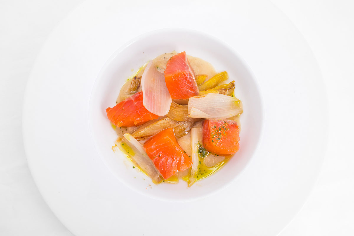 Marinated salmon with cream of bread, chicory and onion